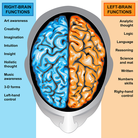 left and right brain test - photo #7