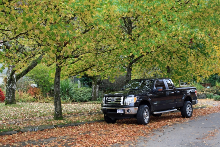 The 2012 Ford F-150 XLT that taught me to slow down.