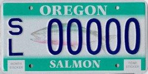 plate_salmon_lg